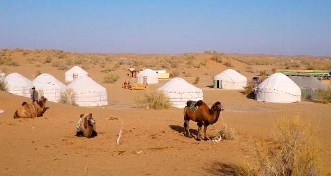 Giorno 8. Bukhara – Nurata – Yangui Gazgan (campeggio Yurte)