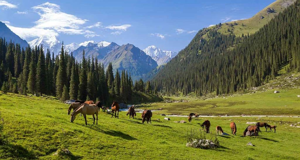 Day 10. Karakol – Grigoriev and Semienov gorge – Chon Kemin (ca. 320 km., 5 h.)