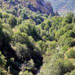 Arslanbob Walnut Forest - Галерея 2