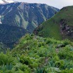 Chatkal Valley - Галерея 3