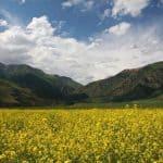 Das Eki Naryn-Tal - Галерея 5