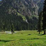 Karakol Gorge - Галерея 0