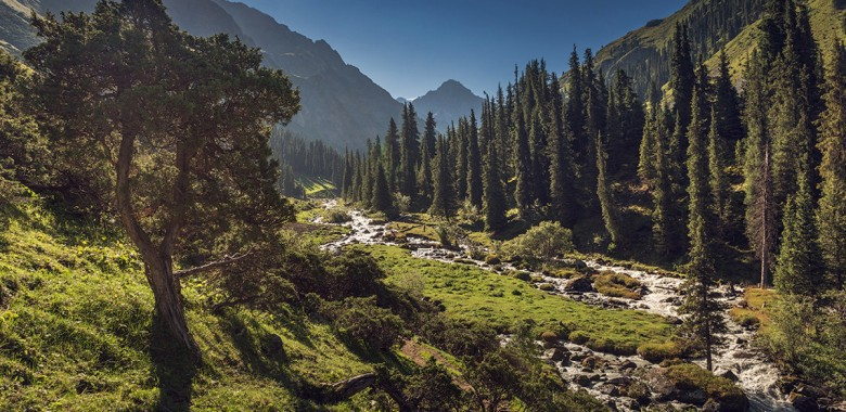 Jour 8. Karakol- gorge de Karakol – Sirota (Trek à pied)