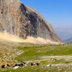 Kyrgyz Ata National Park
