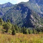 Das Naturschutzgebiet Padysch-Ata