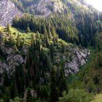 Das Naturschutzgebiet Padysch-Ata - Галерея 3