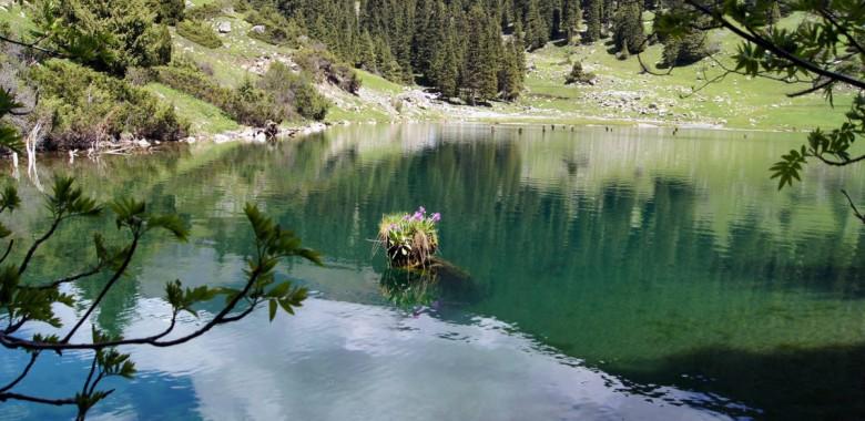 Jour 11. Karakol – gogres Grigorievskoe et Semienovskoe – Tchon Kemin (ca. 310 km., 5 h.)